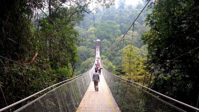 Sejumlah wisatawan melintas jembatan gantung Situgunung di Taman Nasional Gunung Gede Pangrango (TNGGP) Resort Situgunung, Kadudampit, Sukabumi, Jawa Barat, Minggu (17/6/2018).