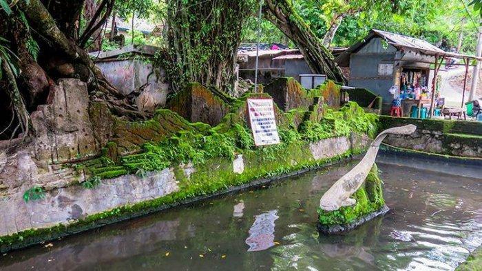 Nekat Mancing di Sendang Lele Sukoharjo, Siap-siap Kena Denda Rp 6 Juta