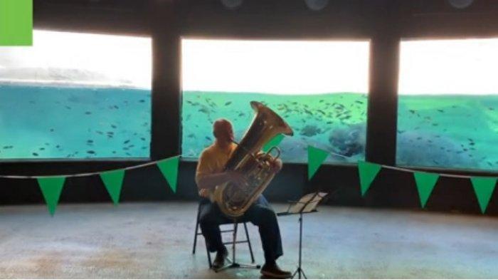 Viral di Medsos, Seorang Pria Buat Pertunjukkan Musik untuk Kuda Nil di Kebun Binatang