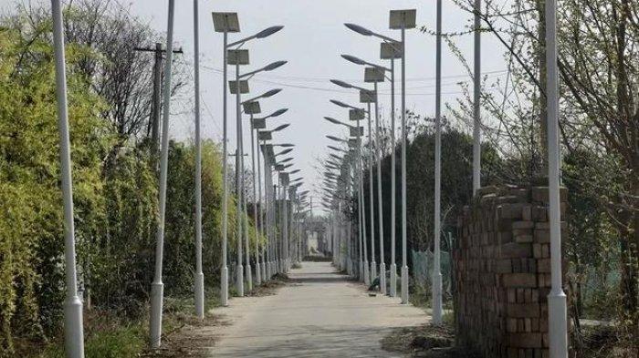 Gang Sempit di Desa Ini Viral Karena Dipasangi Seribu Lampu Jalan oleh Warga, Apa Tujuannya?