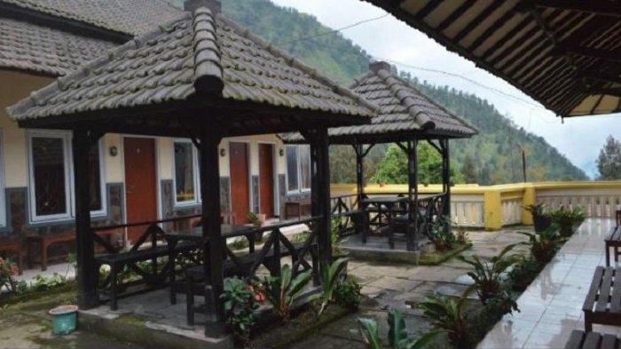 7 Hotel Murah Tak Jauh dari Gunung Bromo, Tarif Mulai Rp 250 Ribu Per Malam