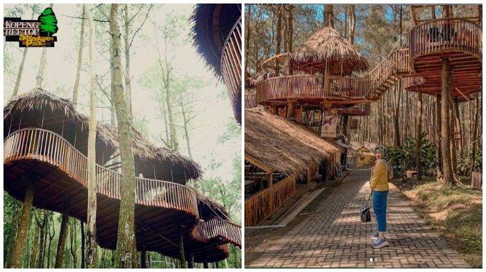 Sky Resto di Kopeng Treetop Semarang yang Instagramable