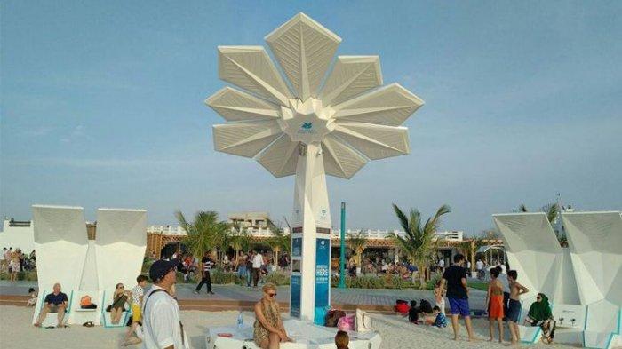 Bukannya Berbuah, Pohon Palem di Dubai Ini Malah Pancarkan Sinyal WiFi Gratis
