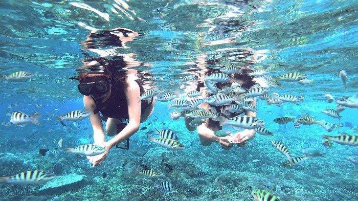 4 Spot Snorkeling Terbaik di Bali, Coba Jelajahi Nusa Lembongan