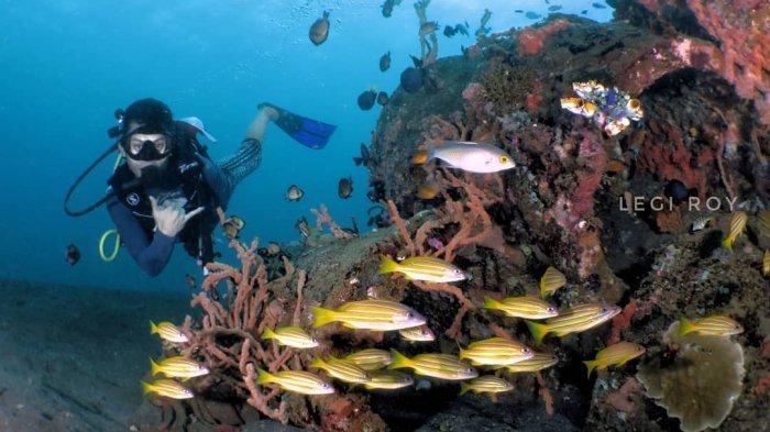 4 Tempat Wisata Populer di Manado, Coba Serunya Snorkeling di Pantai Malalayang