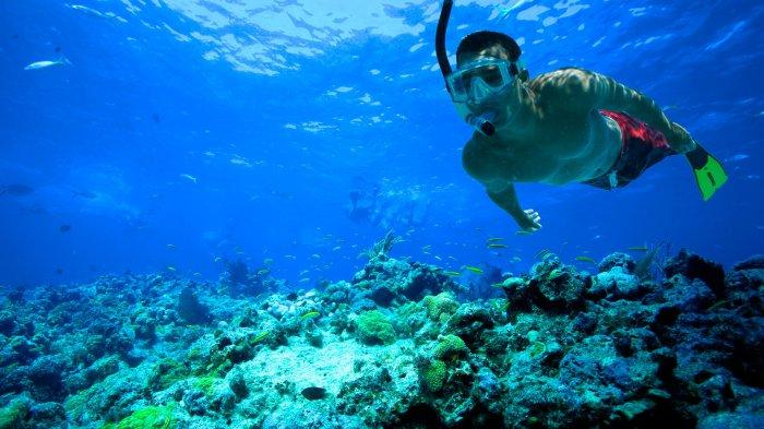 7 Destinasi Snorkeling Terbaik di Indonesia, Ada Pulau Weh Aceh Hingga Wakatobi