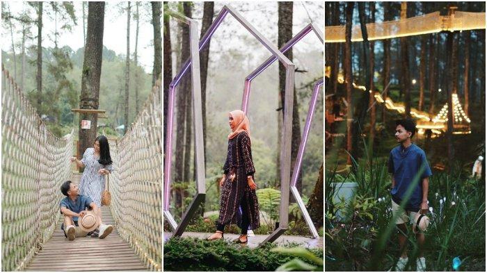 Liburan ke Orchid Forest Lembang, ini 8 Spot Foto Instagramable Favorit Wisatawan