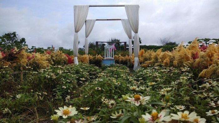 Menikmati Libur Lebaran Di Taman Bunga Romantic Garden Bantul Cocok