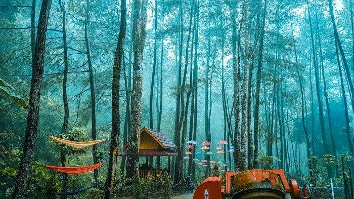 6 Tips yang Bisa Kamu Lakukan Saat Berlibur ke Srambang Park Ngawi, Jangan Lupa Bawa Payung