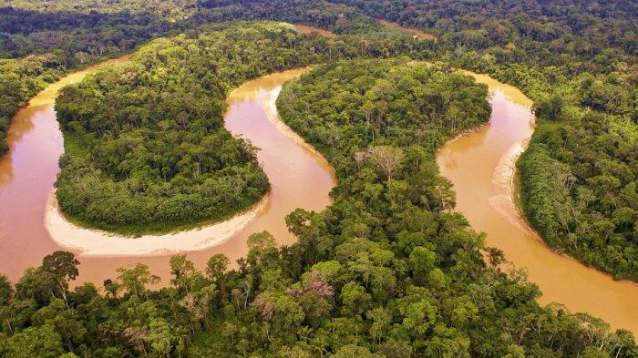 17 Fakta Unik Dunia, Termasuk Tidak Ada Jembatan di Sungai Amazon