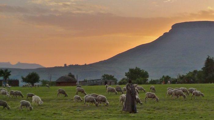Fakta Unik Lesotho, Negara yang Terkurung Daratan di Afrika