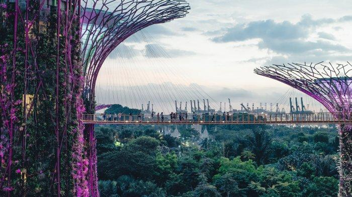 Jangan Pernah Lakukan 7 Hal Ini saat Liburan ke Singapura, Hindari Makan Permen Karet