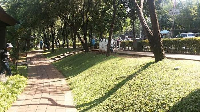 5 Taman Kota di Jakarta Selatan untuk Santai Sore, Lokasi Dekat Taman Margasatwa Ragunan