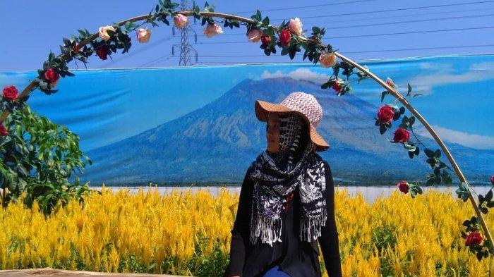 Intip Pesona Taman Bunga Bloemencorso, Destinasi Wisata Baru di Kabupaten Sukoharjo