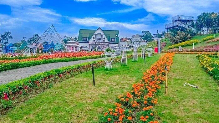 Taman Bunga Celosia dan 5 Tempat Wisata Instagramable di Bandungan Semarang untuk Liburan
