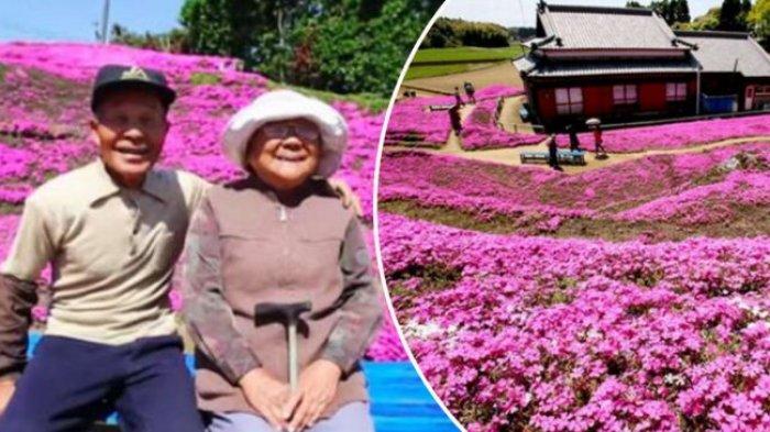 Pria di Jepang Tanam Bunga Selama 30 Tahun Meski Istri Tak Bisa Melihat, Perjuangannya Tak Sia-sia