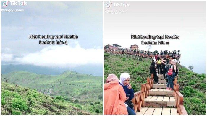 Video Viral Taman Langit Pangalengan ramai dikunjungi wisatawan
