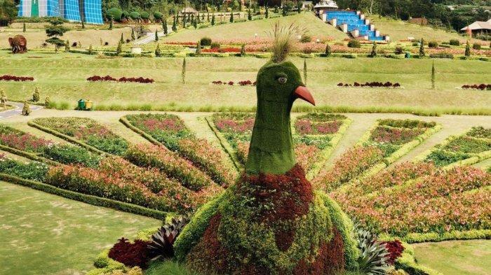 Taman Merak The Blooms Garden