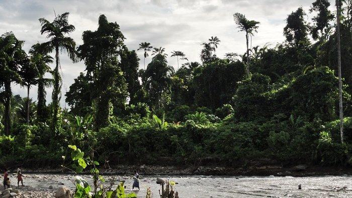 Taman Nasional Aketajawe-Lolobata, tempat tinggal suku Togutil