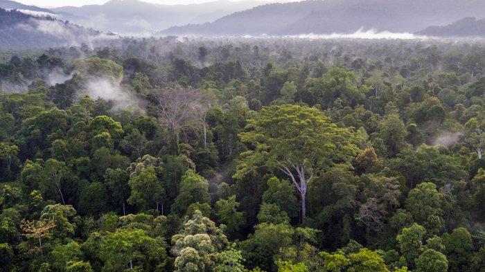 7 Tempat Wisata di Indonesia yang Paling Sulit Dikunjungi, Termasuk Carstensz Pyramid