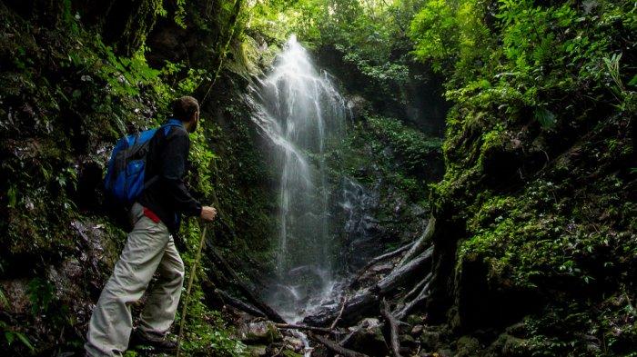 5 Situs Warisan Dunia UNESCO yang di Indonesia Tak Banyak Dikenal , Ada Kerinci Seblat di Sumatera