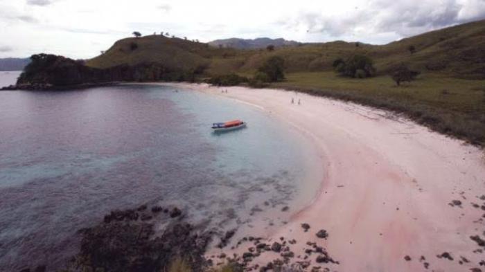 Pasir Pink Beach di Flores Berwarna Merah Muda, Ini Alasannya