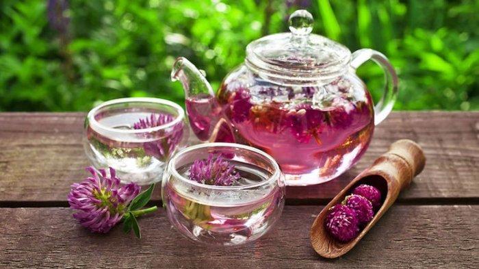 Teh Herbal dan 4 Minuman Pencegah Asam Lambung yang Aman Diminum saat Sahur dan Buka Puasa