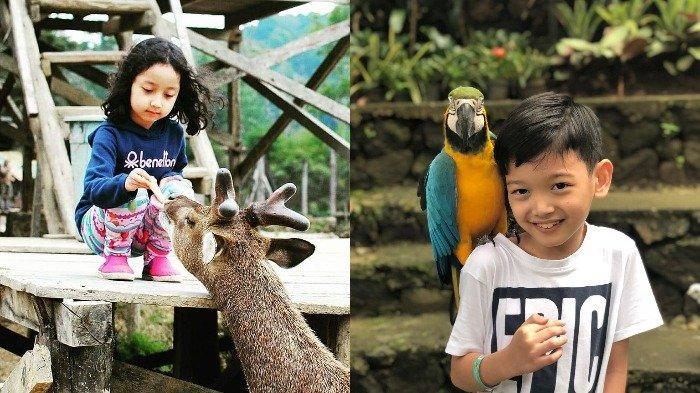 10 Tempat Wisata di Bandung yang Cocok Dikunjungi Bersama Anak saat Libur Natal