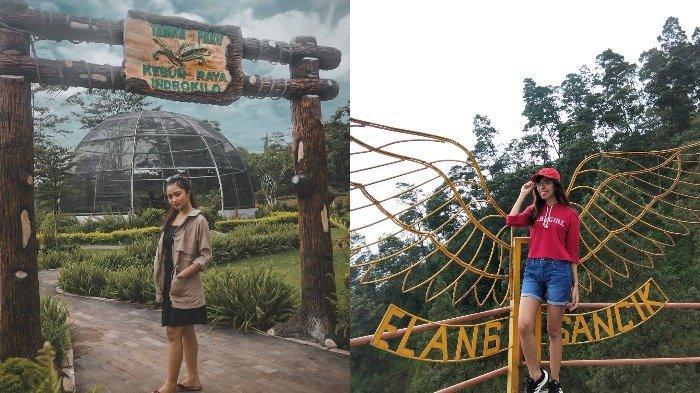 8 Tempat Wisata di Boyolali untuk Liburan Akhir Pekan, Umbul Tirtomulyo Mirip Taman Sari di Jogja