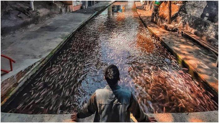Tempat wisata Water Gong di Klaten