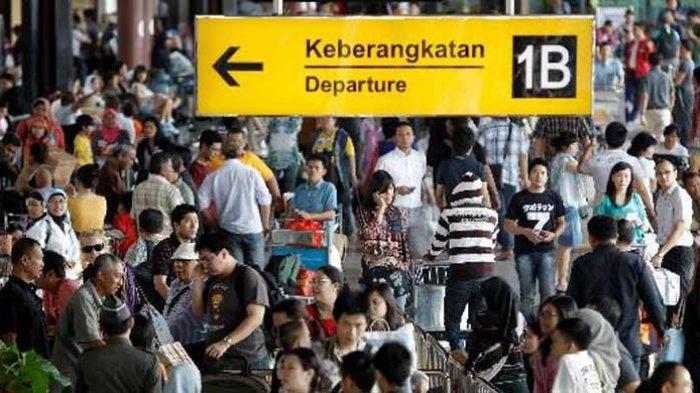 9 Dampak Naiknya Harga Tiket Pesawat Dan Bagasi Berbayar Ancam Pariwisata Dalam Negeri Tribun Travel