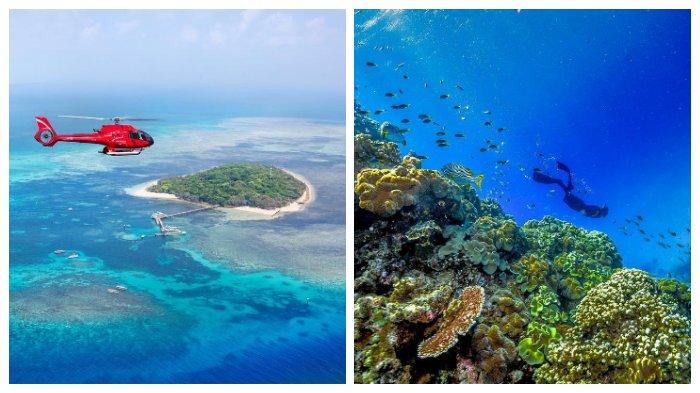Menelusuri The Great Barrier Reef, Gugusan Karang Terbesar di Dunia yang Terancam Hancur