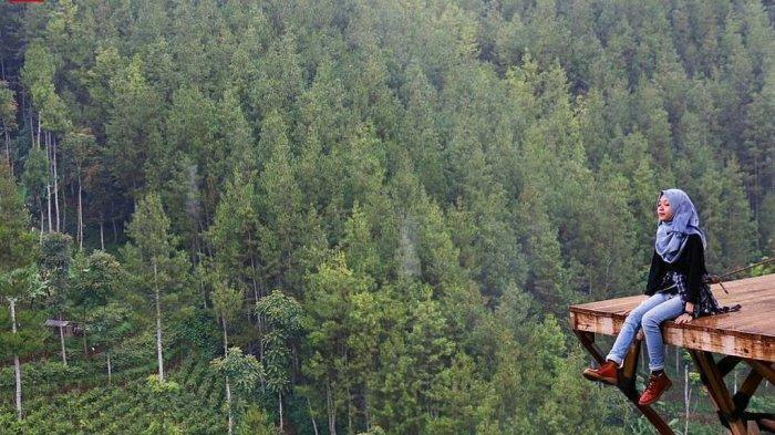 Harga Tiket Masuk The Lodge Maribaya dan Aneka Wahana Menarik di Dalamnya