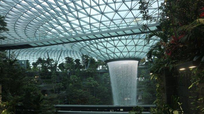 Transit di Singapura? Rasakan Segarnya Hutan Indoor di Shiseido Forest Valley, Jewel Changi Airport