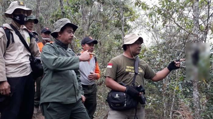 Tim PROFAUNA Indonesia Temukan Lutung Jawa Mati Mengenaskan di Hutan Lindung Malang