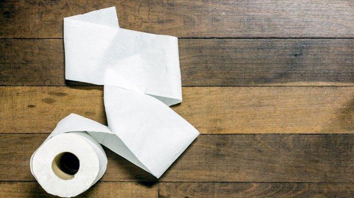 Ini Cara Menggantung Tisu Toilet yang Benar, Kamu Sudah Melakukannya?