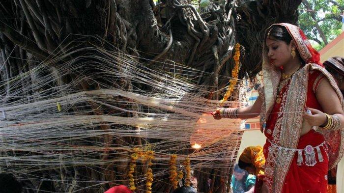 5 Hal Aneh yang Dianggap Wajar di Negara Lain, di Antaranya Wanita yang Menikahi Pohon di India