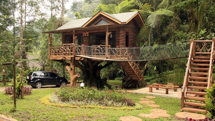 Tree House di Taman Safari Lodge