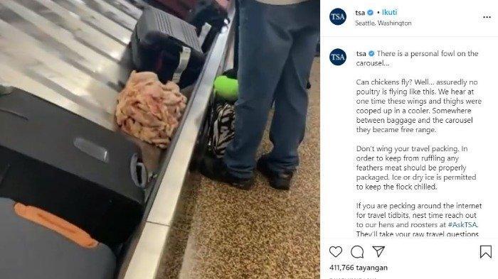 TSA temukan daging mentah di korsel bagasi