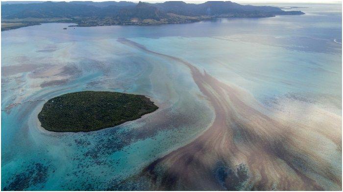 Kondisi Mengerikan Laut Mauritius Tercemar Tumpahan Minyak dari Kapal Tanker yang Bocor