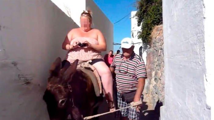 Perhatikan Kesehatan Hewan, Yunani Larang Wisatawan Gemuk Naik Keledai di Santorini