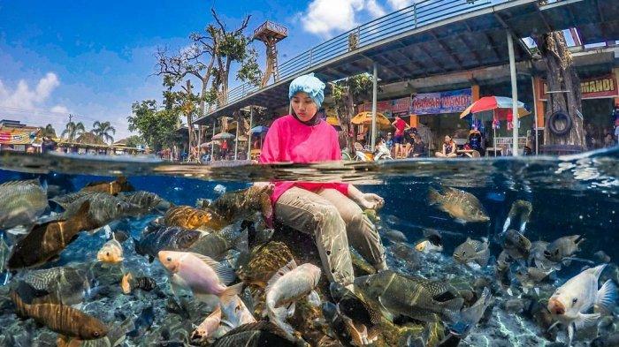 Harga Tiket Masuk Umbul Ponggok Terbaru, Tempat Wisata Air di Klaten yang Populer