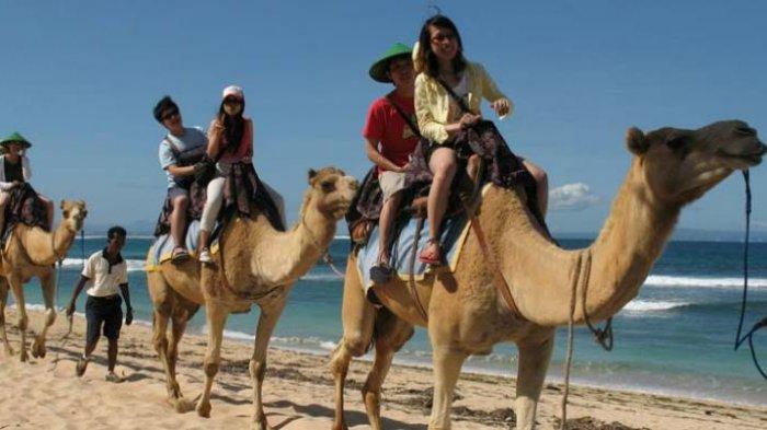 4 Spot Wisata Terbaik di Kawasan Nusa Dua Bali, Ada Safari Unta hingga Museum Pasifika