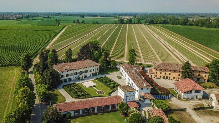 Vila Mewah di Italia Dijual Seharga Rp 192 Miliar, Punya 30 Kamar Tidur dan Dikelilingi Kebun Anggur
