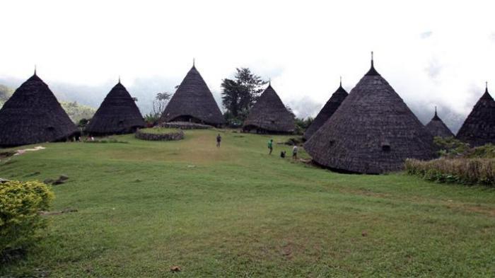 5 Fakta Unik Wae Rebo, Desa di Atas Awan di NTT