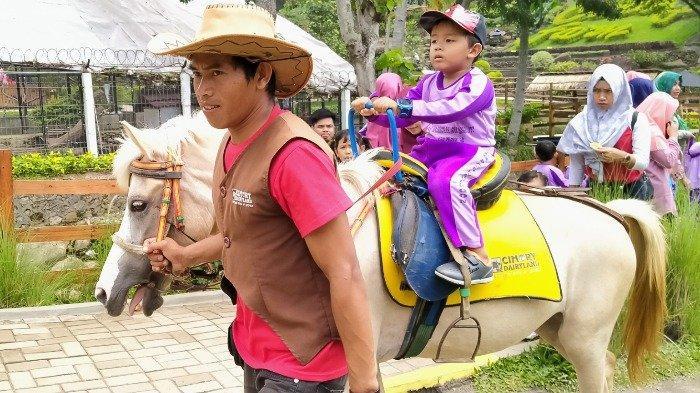 Wahana berkuda di Cimory On The Valley Semarang, Rabu (26/2/2020).