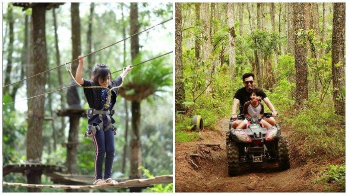 Kopeng Treetop Semarang, Wisata Outbond di Tengah Sejuknya Hutan Pinus Lereng Gunung Merbabu