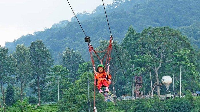 Agrowisata Gunung Mas, Bogor, Jawa Barat