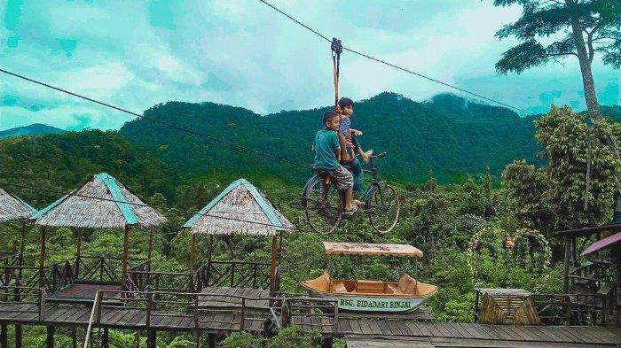 Daftar Kegiatan Seru di Rumah Pohon Puncak Adem, Bisa Berkemah hingga Main Sepeda Gantung