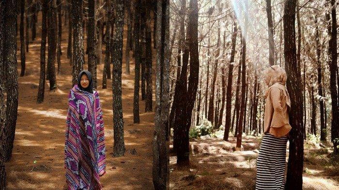 Wisata Wonoasri Seper, Objek Wisata Terbaru di Wonogiri yang Tawarkan Beragam Spot Instagramable